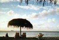 南の島で「マッタリ・・・・」